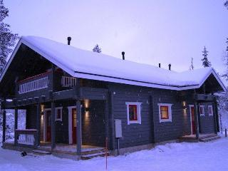Nice Cabin with Internet Access and A/C - Akaslompolo vacation rentals