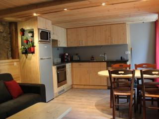 1 bedroom Apartment with Internet Access in Thonon-les-Bains - Thonon-les-Bains vacation rentals