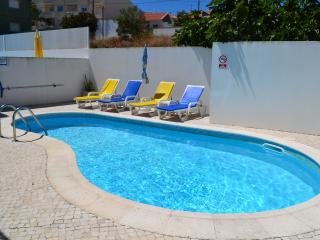 Luxury villa with private pool - Salir do Porto vacation rentals