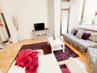 nice apartment /great location - Skopje vacation rentals