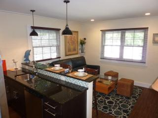 1 BR Condo in the heart of downtown Lewes (2) - Lewes vacation rentals