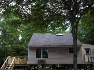 Nice Cabin with Deck and Internet Access - Moneta vacation rentals