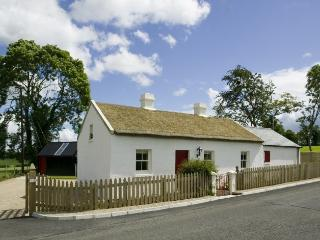 Sophie's Cottage - Irish thatched cottage - Derrylin vacation rentals