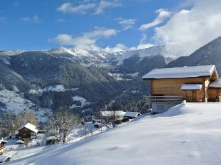 Nice 7 bedroom La Tzoumaz Ski chalet with Internet Access - La Tzoumaz vacation rentals