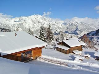 7 bedroom Ski chalet with Internet Access in La Tzoumaz - La Tzoumaz vacation rentals