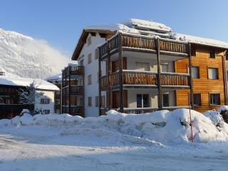 Convenient Condo with Internet Access and Central Heating - Flims vacation rentals