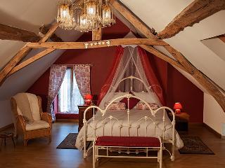 Beautiful 2 bedroom Gite in Noyant - Noyant vacation rentals