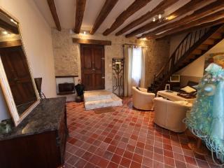 Amelia,luxurious artist's home - Montrichard vacation rentals