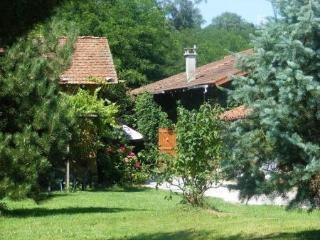 Nice 4 bedroom Gite in Coligny - Coligny vacation rentals