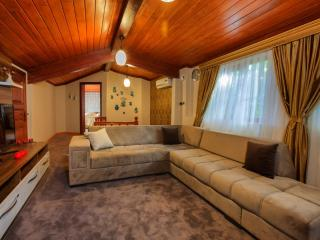 Pashas House Istanbul No:3 Cozy Apart in Sultanahm - Istanbul vacation rentals