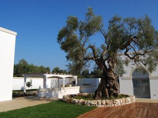 6 bedroom Villa with Internet Access in Carpignano Salentino - Carpignano Salentino vacation rentals