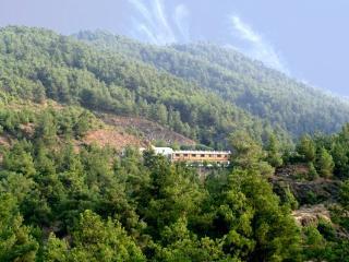 Angel's Hills Mountain Resort - Nicosia vacation rentals