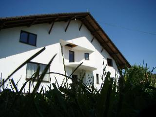 Bright 8 bedroom Transylvania Villa with Internet Access - Transylvania vacation rentals