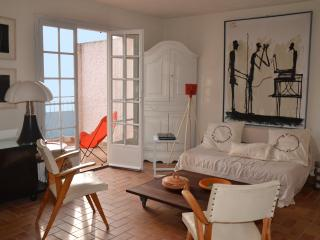 Exceptional  for sea lovers - Cavalaire-Sur-Mer vacation rentals