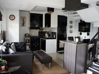 Modern 2BR flat Tomas Morato Quezon City - Quezon City vacation rentals