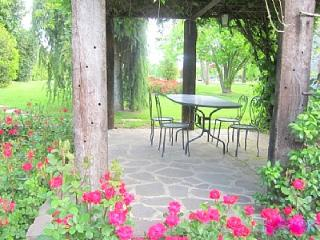 2 bedroom House with Deck in Castiglion Fiorentino - Castiglion Fiorentino vacation rentals