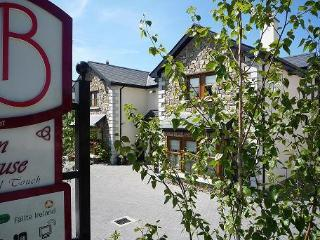 Avlon House Bed & Breakfast - Carlow vacation rentals