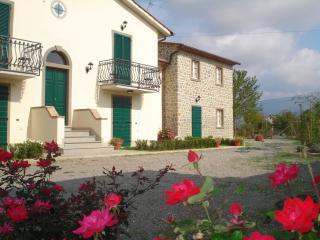 Le Casine - Olivo Apartment - Cortona vacation rentals