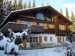 Casa Nuorsa Nera - Laax vacation rentals