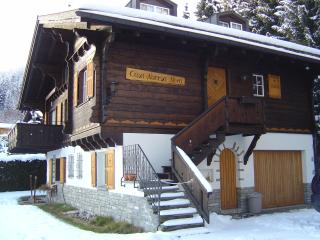 Nice Chalet with Internet Access and Dishwasher - Laax vacation rentals