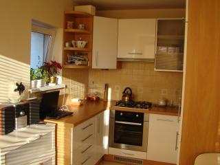 Studio apartment in Gdansk - Gdansk vacation rentals