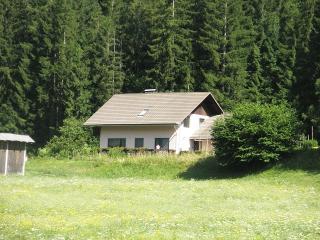 Ratece Kr.Gora - app Mertelj comfort 4-6 persons - Ratece vacation rentals