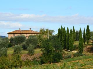 Stunning views at Siena doorstep - Costalpino vacation rentals