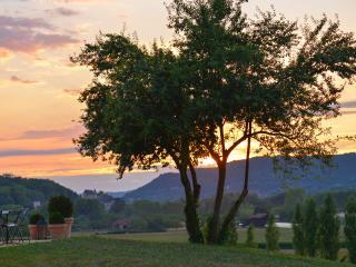 BOIS DE SELVES - Beynac-et-Cazenac vacation rentals