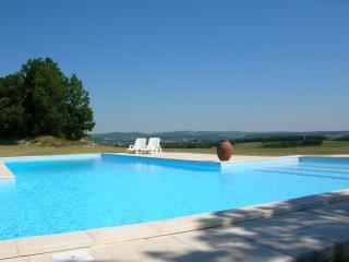 4 bedroom Farmhouse Barn with Internet Access in Castelnau-de-Montmiral - Castelnau-de-Montmiral vacation rentals