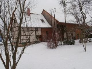 Nice 5 bedroom Gite in Altkirch - Altkirch vacation rentals