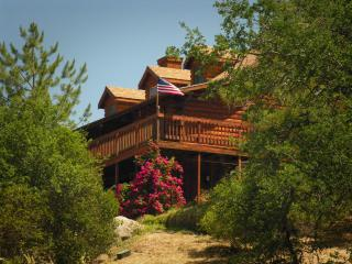 Log House Lodge Pioneer Suite - Three Rivers vacation rentals