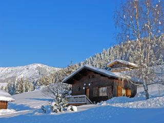 1 bedroom Ski chalet with Internet Access in Notre Dame de Bellecombe - Notre Dame de Bellecombe vacation rentals
