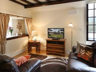 Vulcan Lodge - the Woodman Holiday Cottage - Llanwrthwl vacation rentals