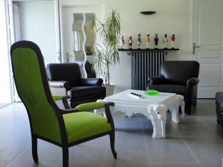 Appart 3*  avec Jardin + Parkg - Avignon vacation rentals