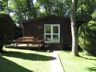 Beautiful 3 bedroom Lodge in Cenarth - Cenarth vacation rentals