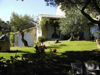 Cozy 1 bedroom Vaison-la-Romaine Bed and Breakfast with Internet Access - Vaison-la-Romaine vacation rentals