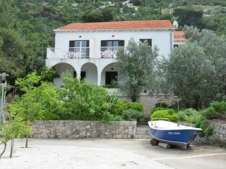 Comfortable Villa with Internet Access and A/C - Mljet vacation rentals