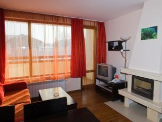 Two bedroom apartment in Bansko - Bansko vacation rentals