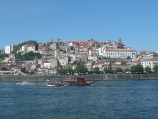 76 Rua Tomas Gonzaga, Porto - Porto vacation rentals