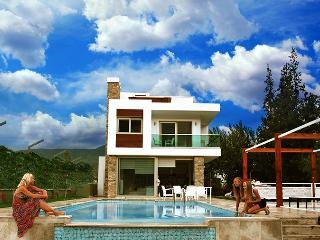 Modern villa w  pool &best mountain view in Dalyan - Dalyan vacation rentals