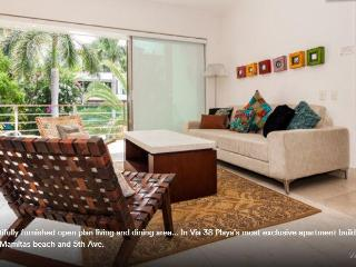 10 guests 5th Ave -Private Roof Terrace w Hot tub - Playa del Carmen vacation rentals
