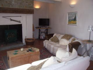 Bright Cottage with DVD Player and Microwave - Barenton vacation rentals