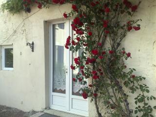 Petit Cerisier Holiday Cottage - Vouvant vacation rentals