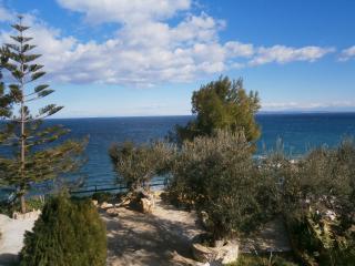 Wonderful Zakynthos Town Condo rental with Garden - Zakynthos Town vacation rentals