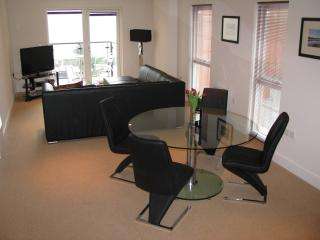 Nice Condo with Internet Access and Satellite Or Cable TV - Swansea vacation rentals