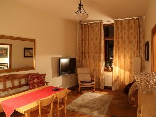 Perfect Condo with Internet Access and Central Heating - Zakopane vacation rentals