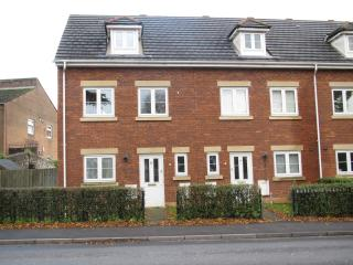 Fairwater Green Cardiff - Cardiff vacation rentals