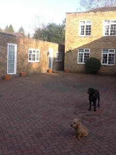 Gorgeous Guest house with Internet Access and Parking Space - Daventry vacation rentals
