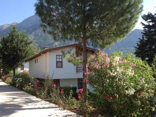 Nice 2 bedroom House in Beycik - Beycik vacation rentals