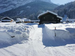 Nice Ski chalet with Internet Access and Wireless Internet - Les Diablerets vacation rentals